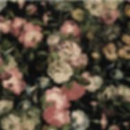 Screen Shot 2020-07-13 at 3.51.13 PM.png