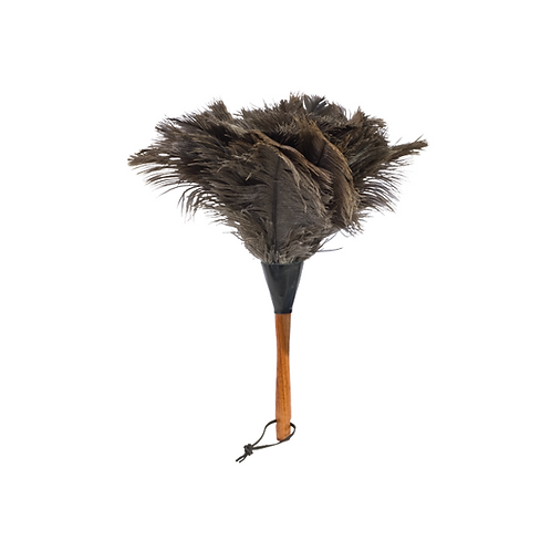Kids Feather Duster