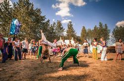 capoeira fieldview-3