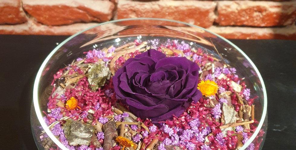 """Composition """"pot-pourri"""" et sa rose éternelle"""