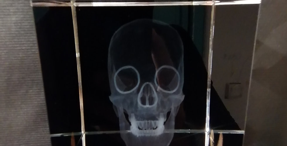 Crâne verre