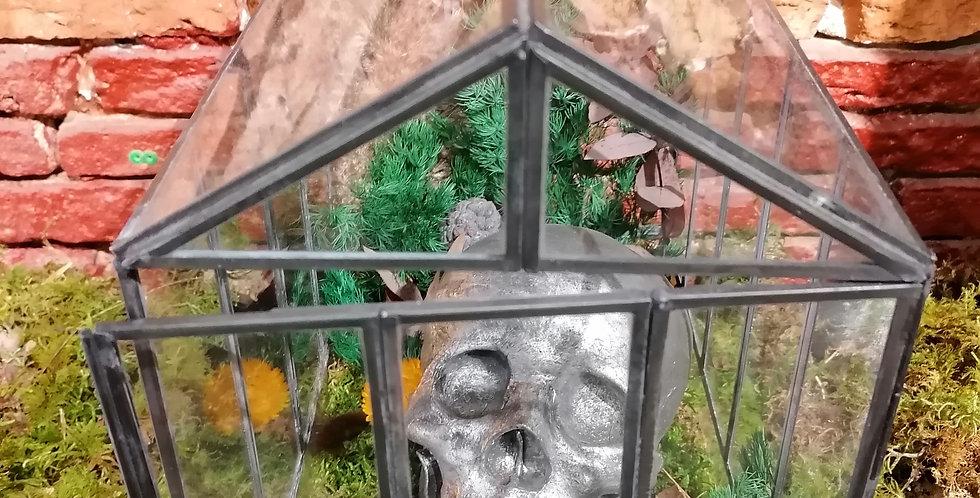 Serre terrarium stabilisé 😀
