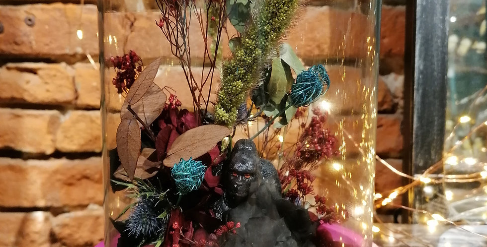Mr gorille 🦍🦍🦍🦍