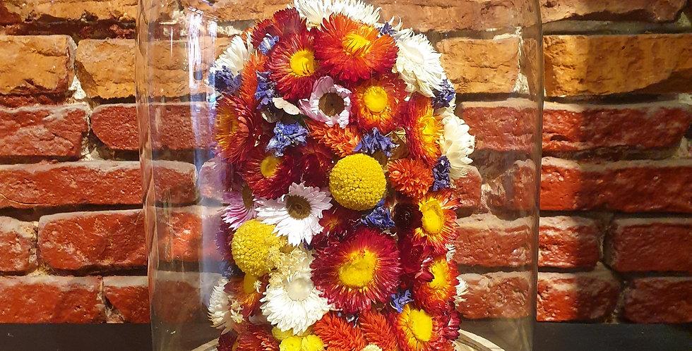 Cloche Fleurs séchées XL