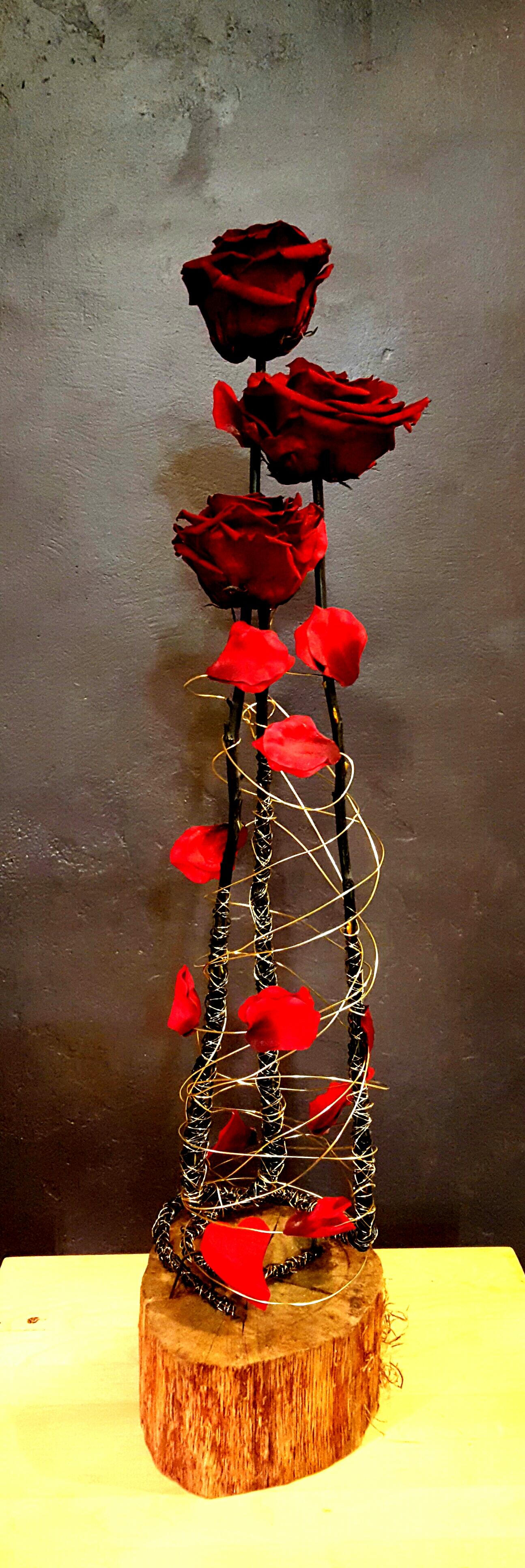Roses Eternelles