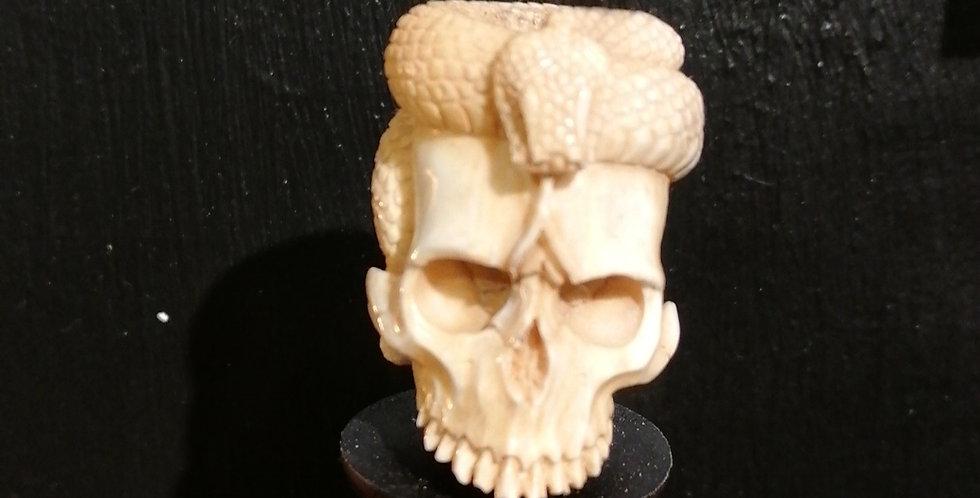Le crâne et son serpent