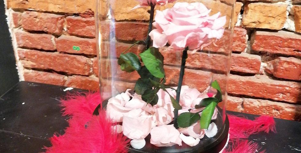 """Le duo """"la vie en rose"""""""