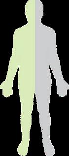 diététicienne nutritionniste micronutrition lyon