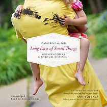 Long Days of Small Things Cover