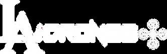 Transparent Logo White New.png