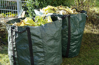 Homeschool Garden Club - Recycling to Keep The Costs Down