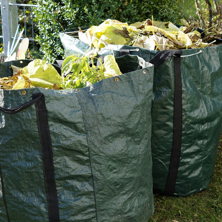 Find out when your brown bin collections start again