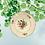 Assiettes plates service  Sarreguemines