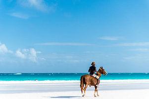 Harbor Island – Pink Sand Beach.jpg