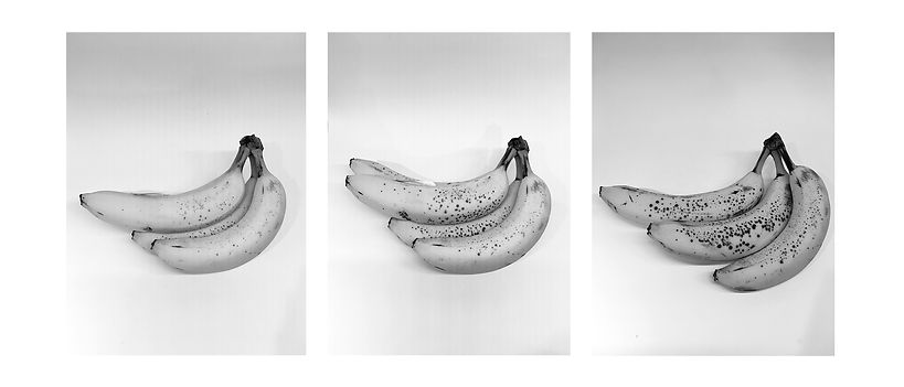 bananas-3.jpg