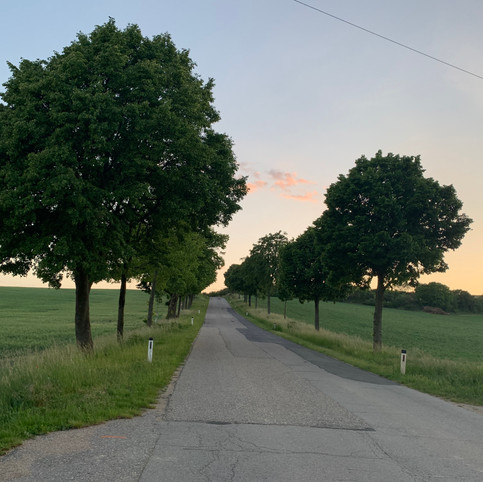 Allee Ortsanfang