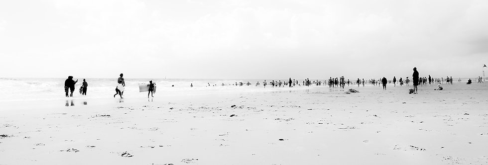 ERSEHNTES LANDEN #12 / Atlantikküste - F / 2014