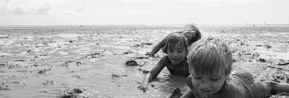 ERSEHNTES LANDEN #16 / Atlantikküste - F / 2014