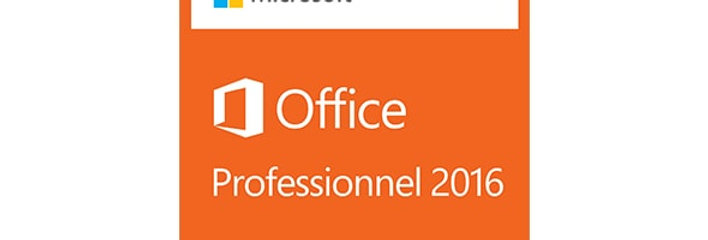 Office Professionnel 2016 multilangues (zone Euro)