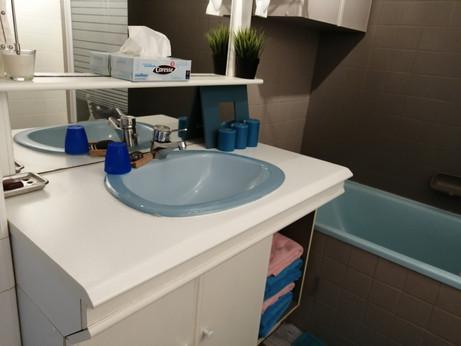 salle de bain en rez-de chaussée