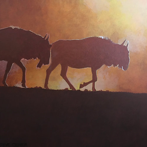 Wildebeest at Sundown