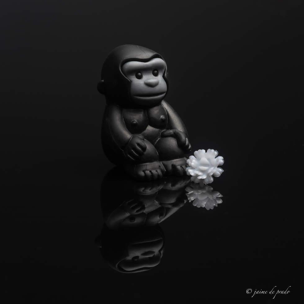 Magilla Gorilla