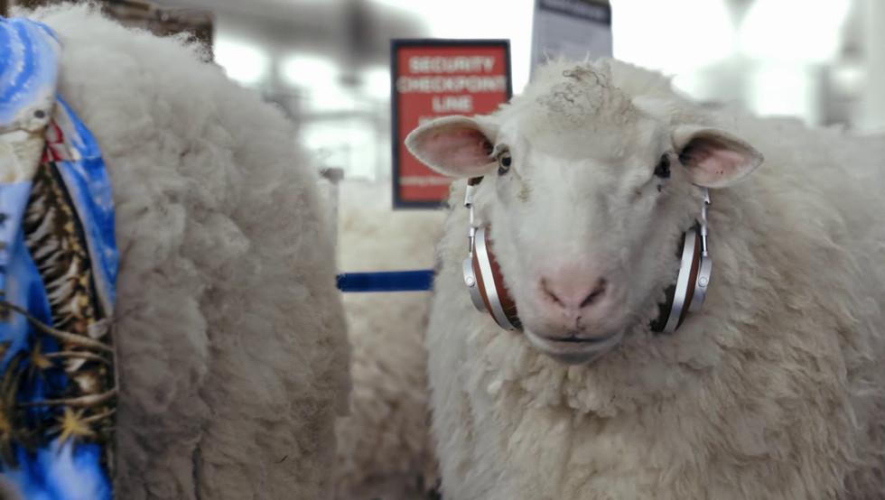 JetSmarter Sheeple Hero   Commercial Film Director Johnny Han   The Visionaries