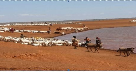 How we Can Keep Pastoral Communities Resilient to Drought