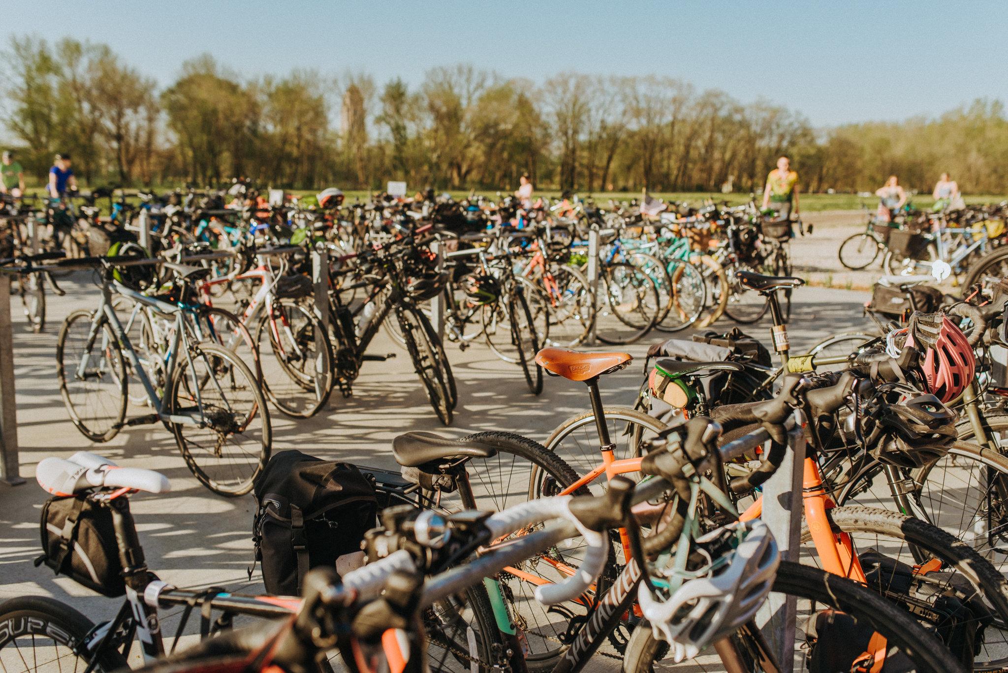 alyssaleicht-pedalart-2018-1