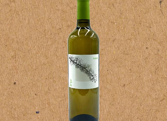 Jonc Blanc Fleur Blanc, Sauvignon Blanc