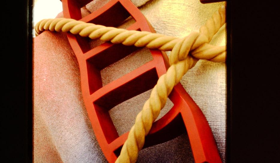 "Ladder Detail of ""House Ball"""