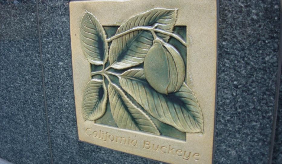 Union Square Art Tile - Buckeye