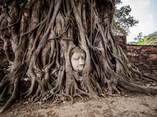 Temple Run in Ayutthaya