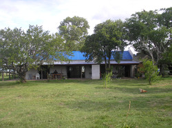 2007. Zamora