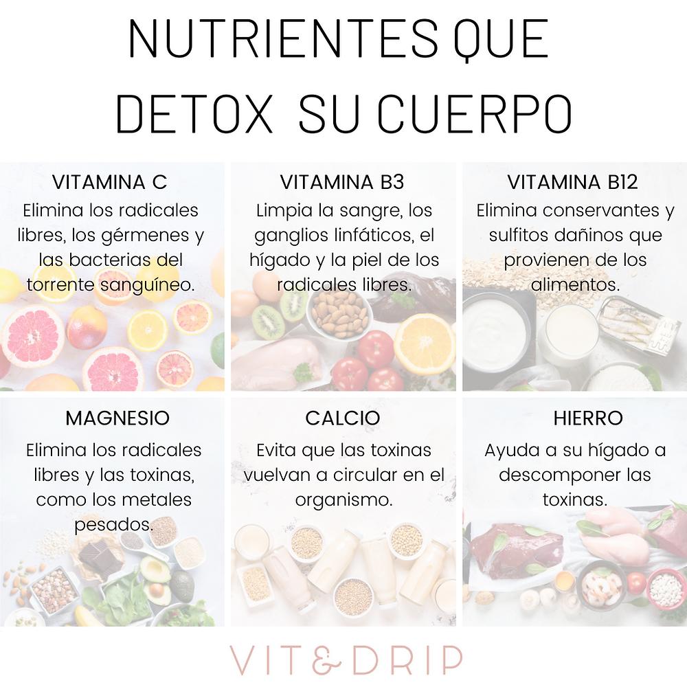 Cómo Desintoxicar Tu Cuerpo Y Por Qué Los Nutrientes Son Esenciales En El Proceso