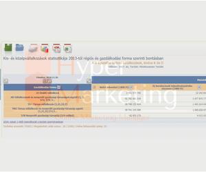 online marketing Győr piac kutatás-KKV statisztika KSH