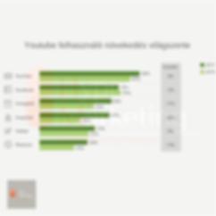 közösségi média marketing győr-Youtube felhasználók növekdése-hypermarketing győr