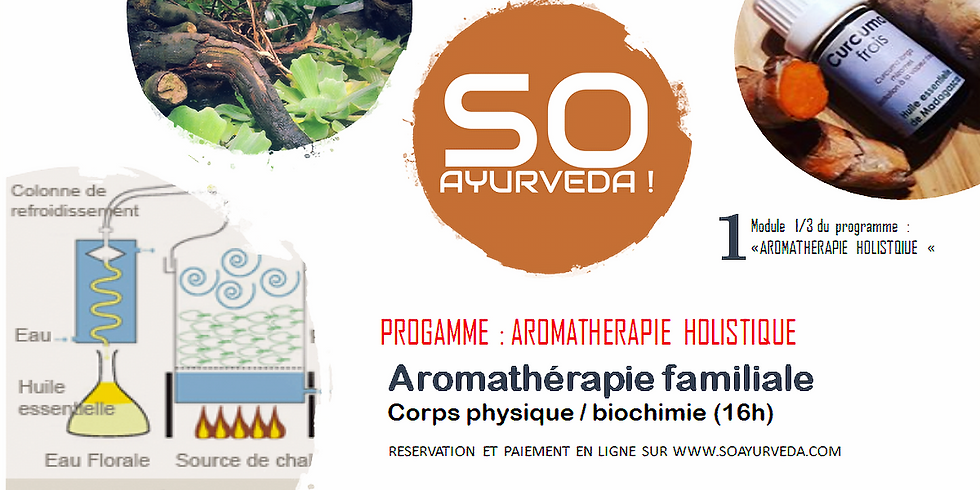 Aromathérapie familiale (AH1)