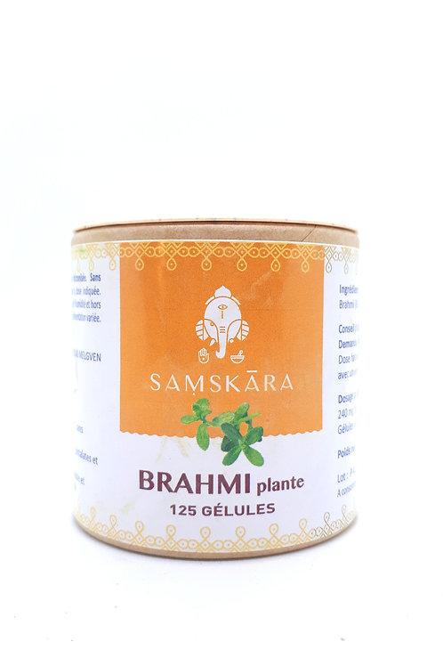 Brahmi plante 125 gélules vegan