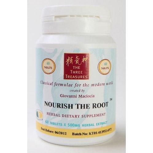 T01 - Nourish the Root