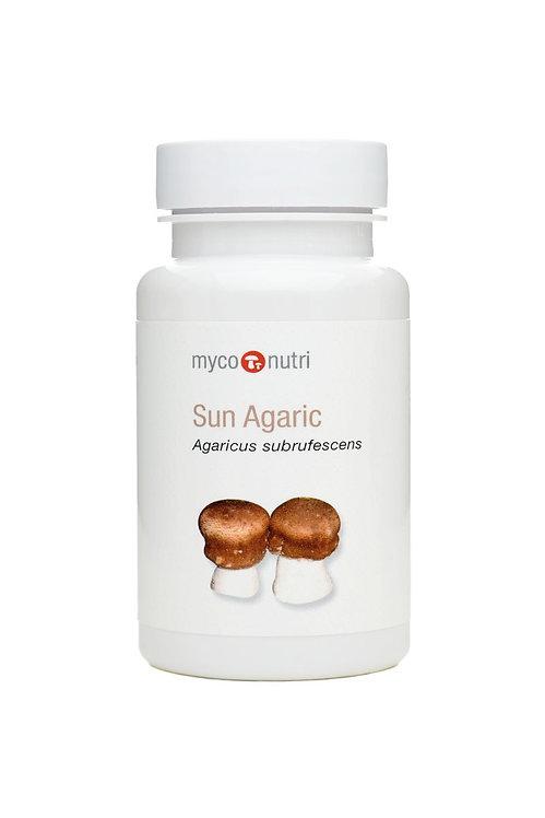 Sun Agaric