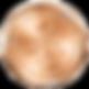 2020-SFWSC-Bronze-Med-300x300.png