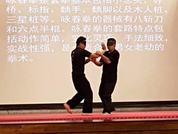Maris Stella High Martial Arts Fair
