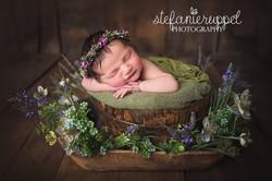 Fotograf Fulda Babyfotografebb