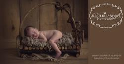 Babyfotograf Fulda