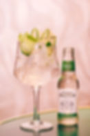 Gin & Tonic drinken in Deventer