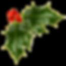 kerstbesjes