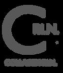 C PIN Logo.png
