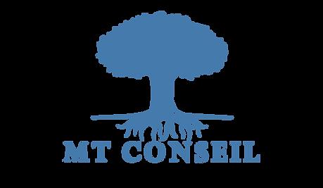 MT Conseil - bilan et conseil patrimonial indépendant