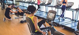 Fitness orig A.tif